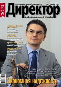 Директор информационной службы №11/2009