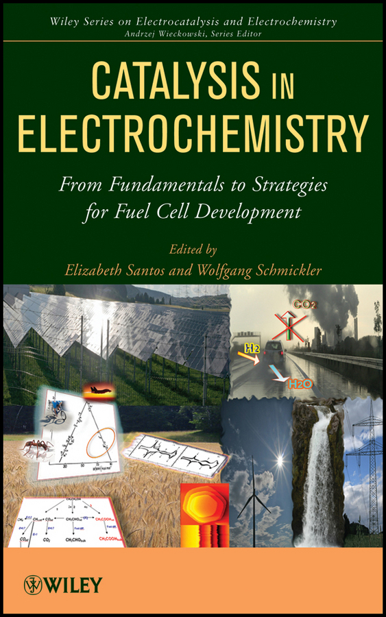 Catalysis in Electrochemistry. From Fundamental Aspects to Strategies for Fuel Cell Development