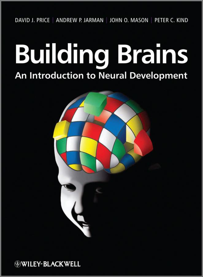 Building Brains. An Introduction to Neural Development