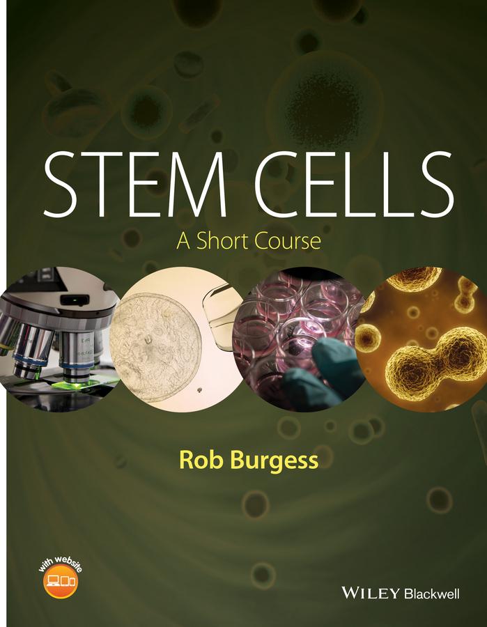 Stem Cells. A Short Course