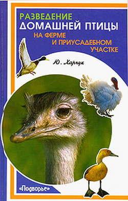 Электронная книга «Разведение домашней птицы на ферме и приусадебном участке»