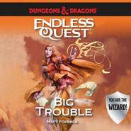 Big Trouble - Dungeons & Dragons: Endless Quest (Unabridged)