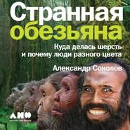 Странная обезьяна. Куда делась шерсть и почему люди разного цвета