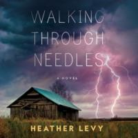 Walking Through Needles (Unabridged)