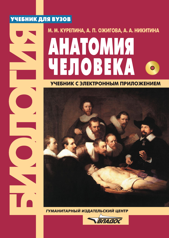 А. А. Никитина Анатомия человека сапин м николенко в тимофеева м анатомия человека иммунная лимфатическая и эндокринная система 32 карточки