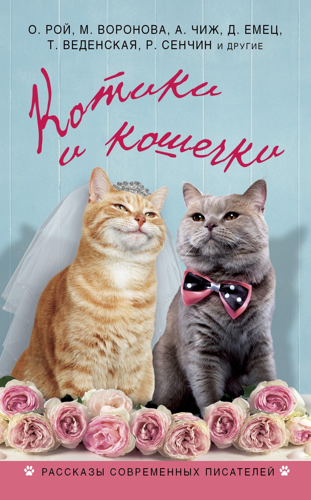kotiki i koshechki sbornik