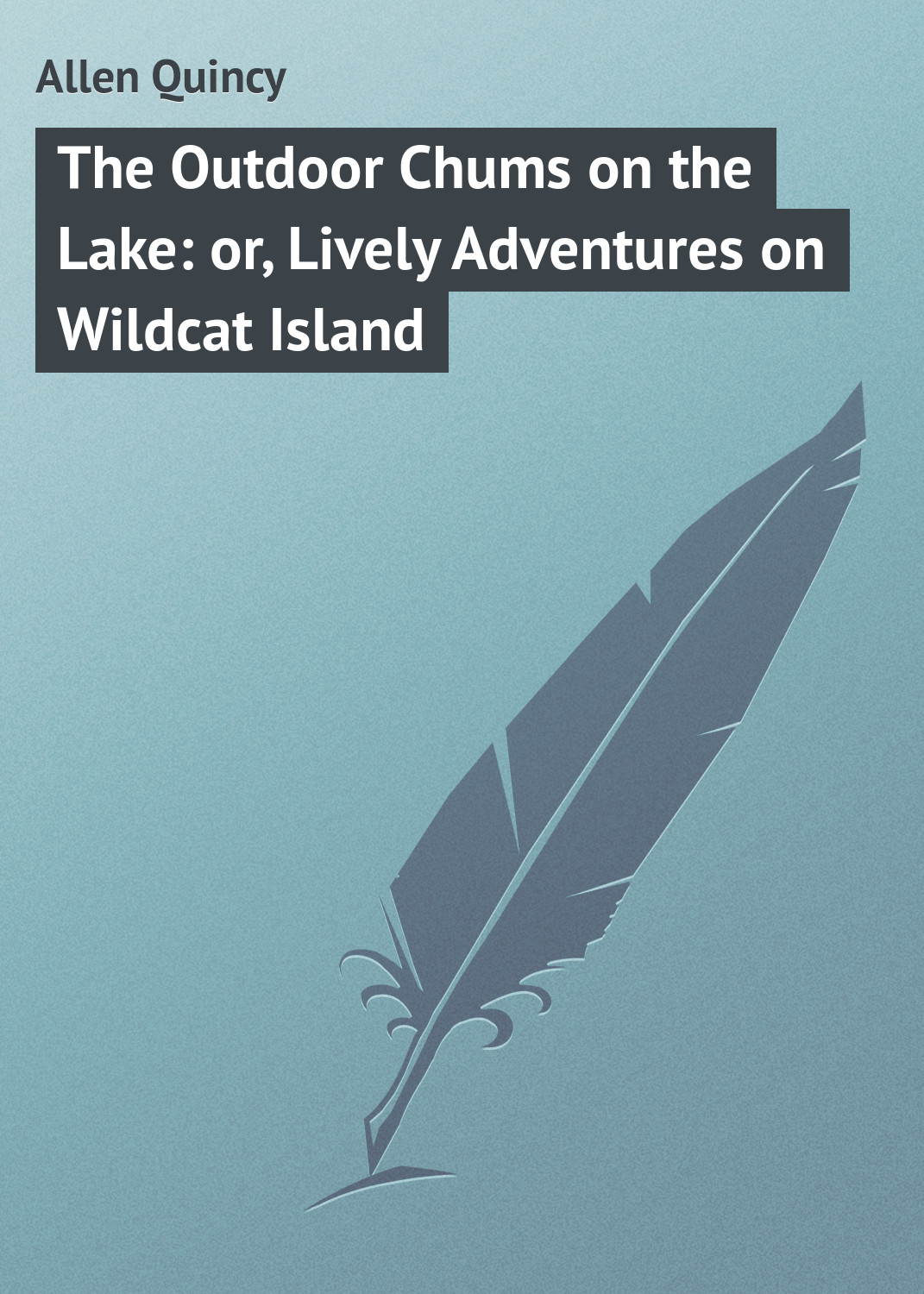 купить Allen Quincy The Outdoor Chums on the Lake: or, Lively Adventures on Wildcat Island по цене 0 рублей