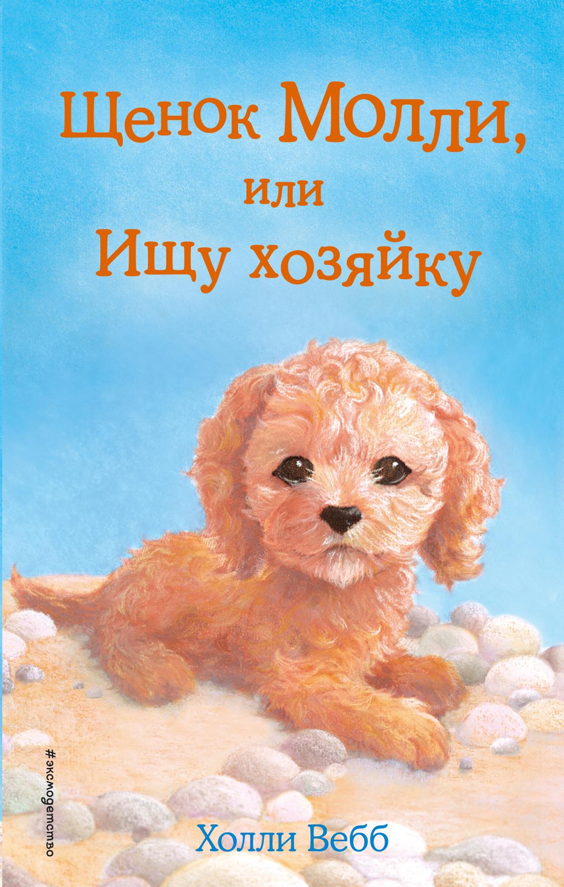 Холли Вебб Щенок Молли, или Ищу хозяйку холли вебб щенок молли или ищу хозяйку