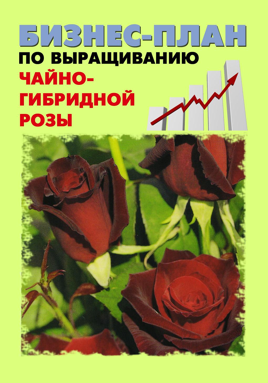 Бизнес-план по выращиванию чайно-гибридной розы
