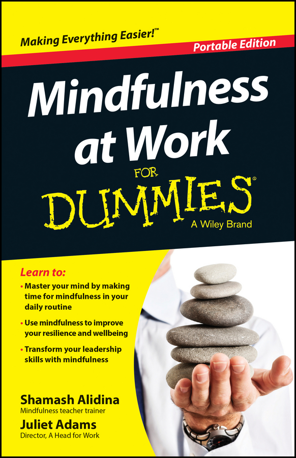 Shamash Alidina Mindfulness At Work For Dummies a mindfulness guide for the frazzled