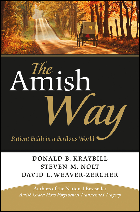 лучшая цена Donald Kraybill B. The Amish Way. Patient Faith in a Perilous World