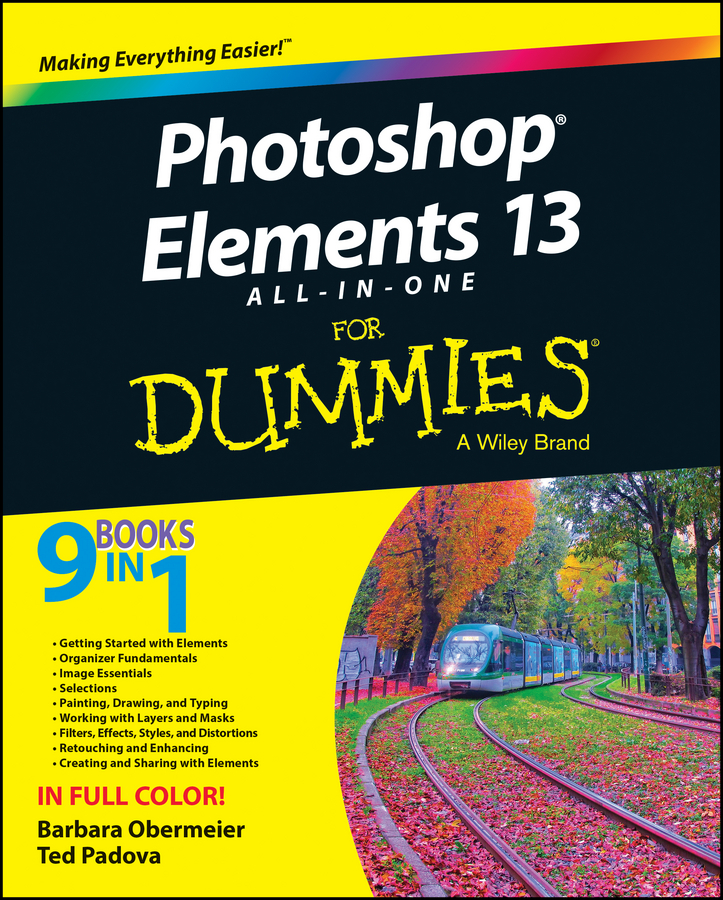 Barbara Obermeier Photoshop Elements 13 All-in-One For Dummies static and dynamic elements in ted hughes river