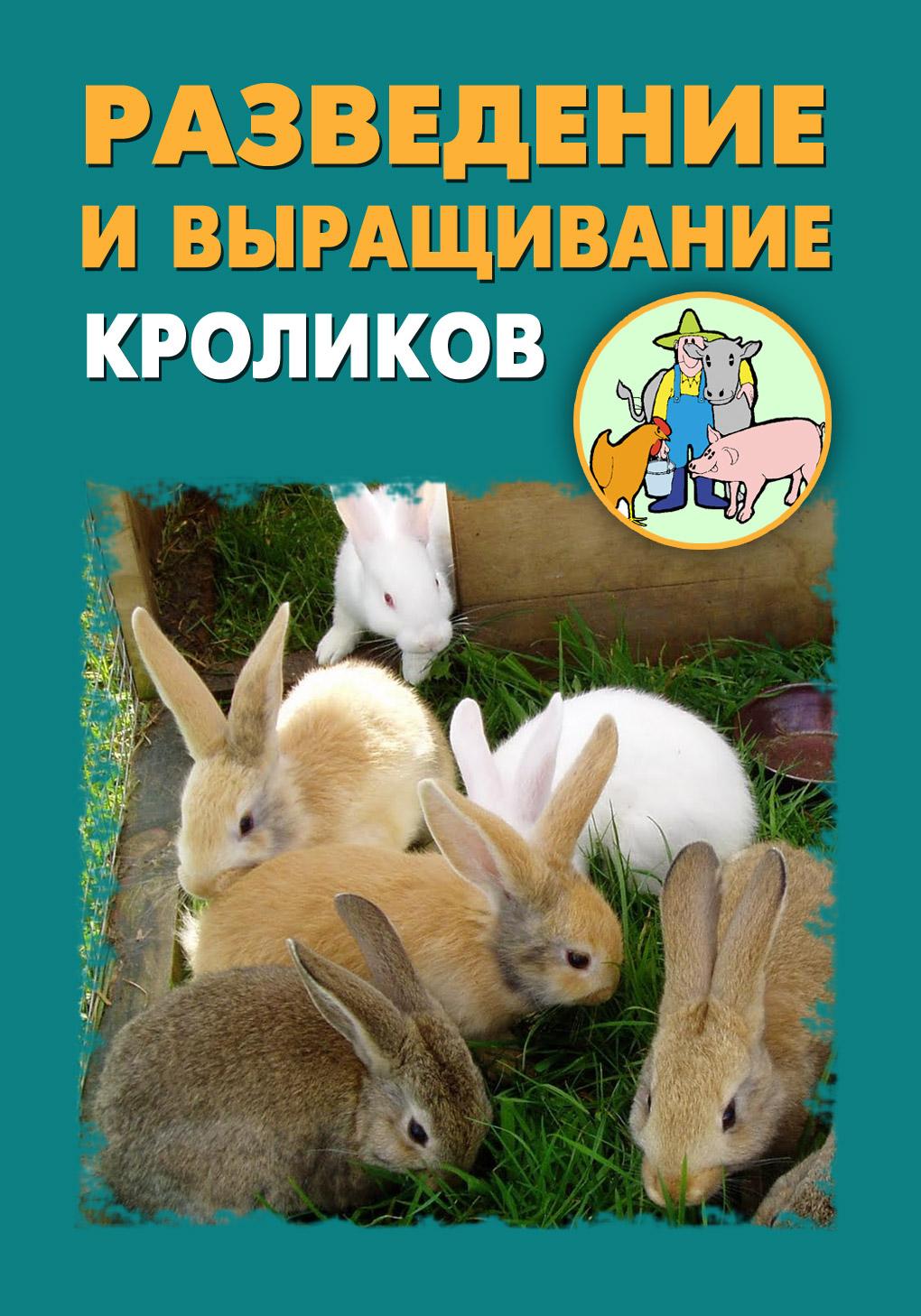 Илья Мельников Разведение и выращивание кроликов лапин а выращивание кроликов содержание разведение лечение