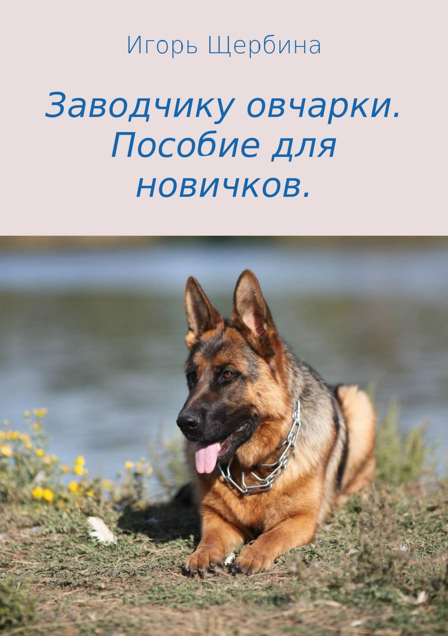 Игорь Анатольеич Щербина Заодчику очарки. Пособие для ноичко