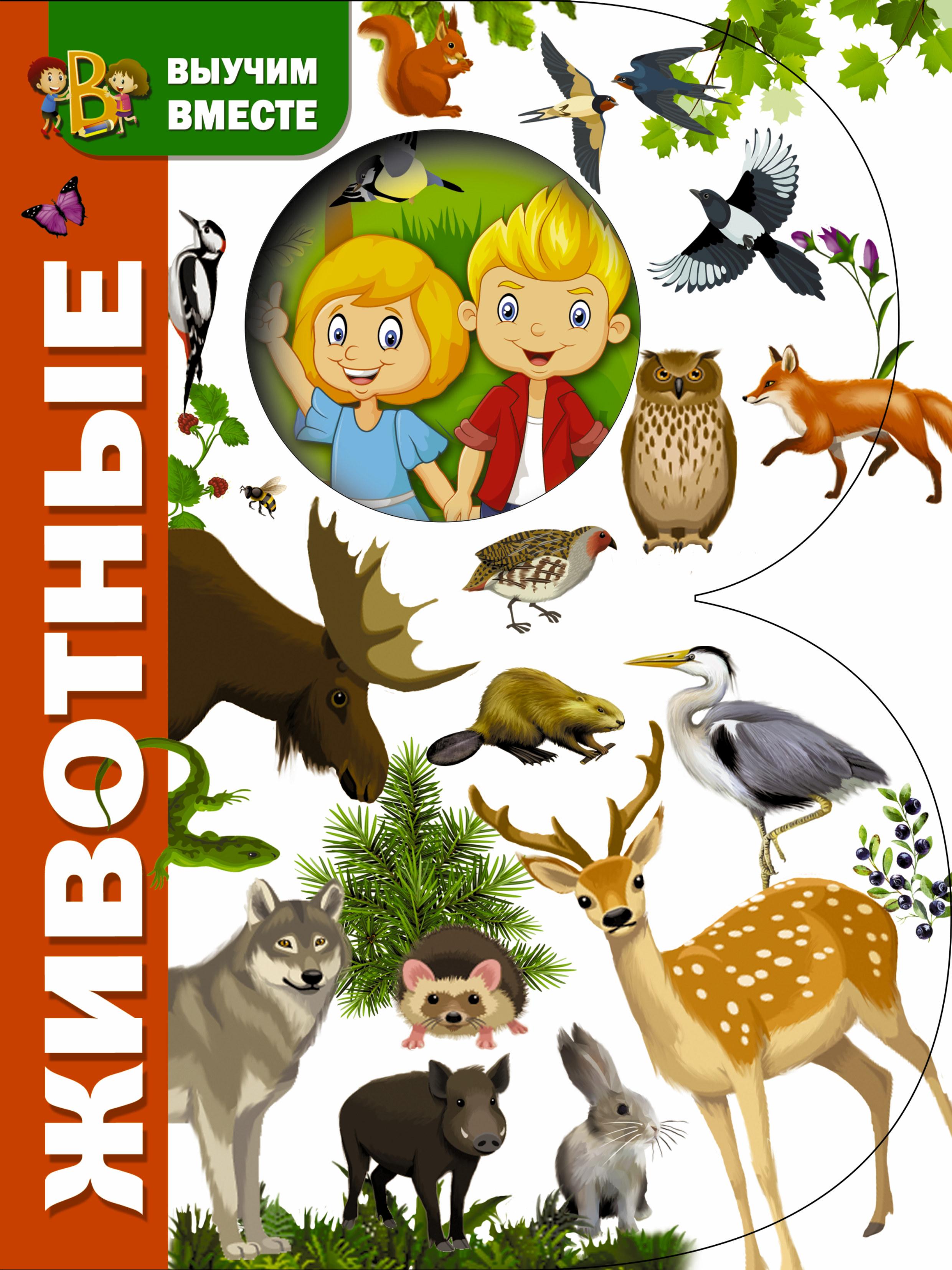 Отсутствует Животные антипина м богачева п и др пер животные энциклопедия для детей и их родителей