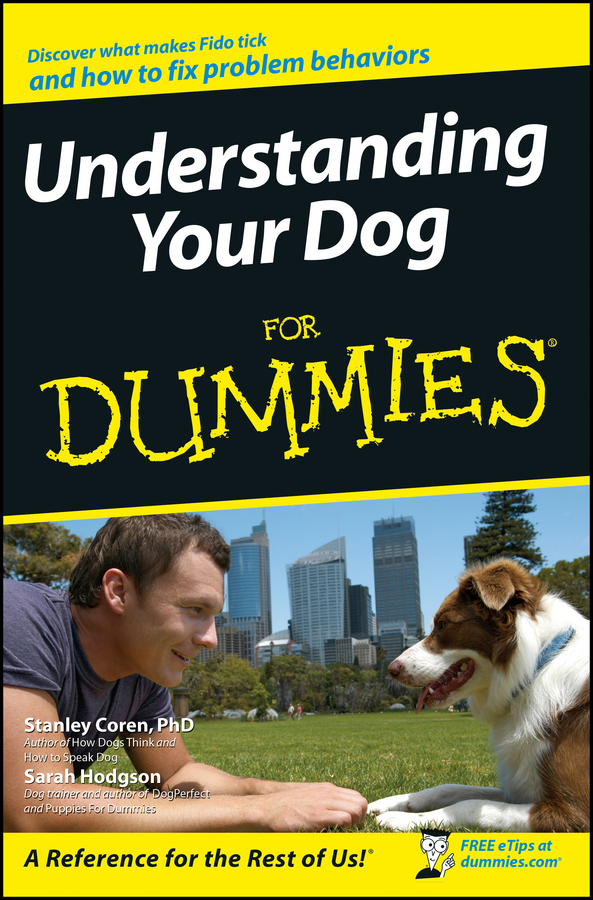 Sarah Hodgson Understanding Your Dog For Dummies michael burchell no excuses how you can turn any workplace into a great one