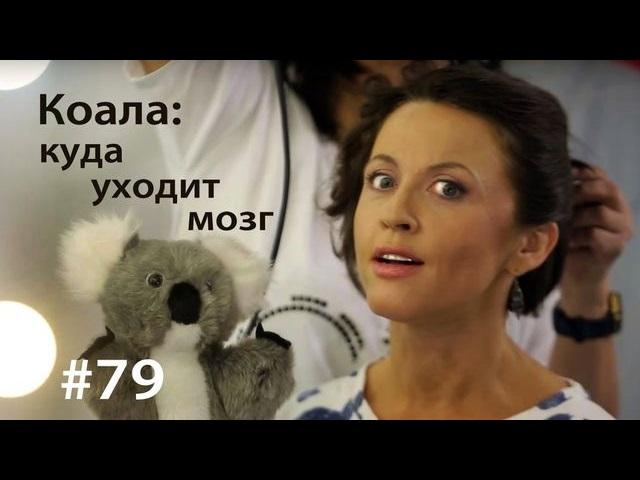 Евгения Тимонова Коала: куда уходит мозг алексей осипов куда уходит детство повесть isbn 9785448376061