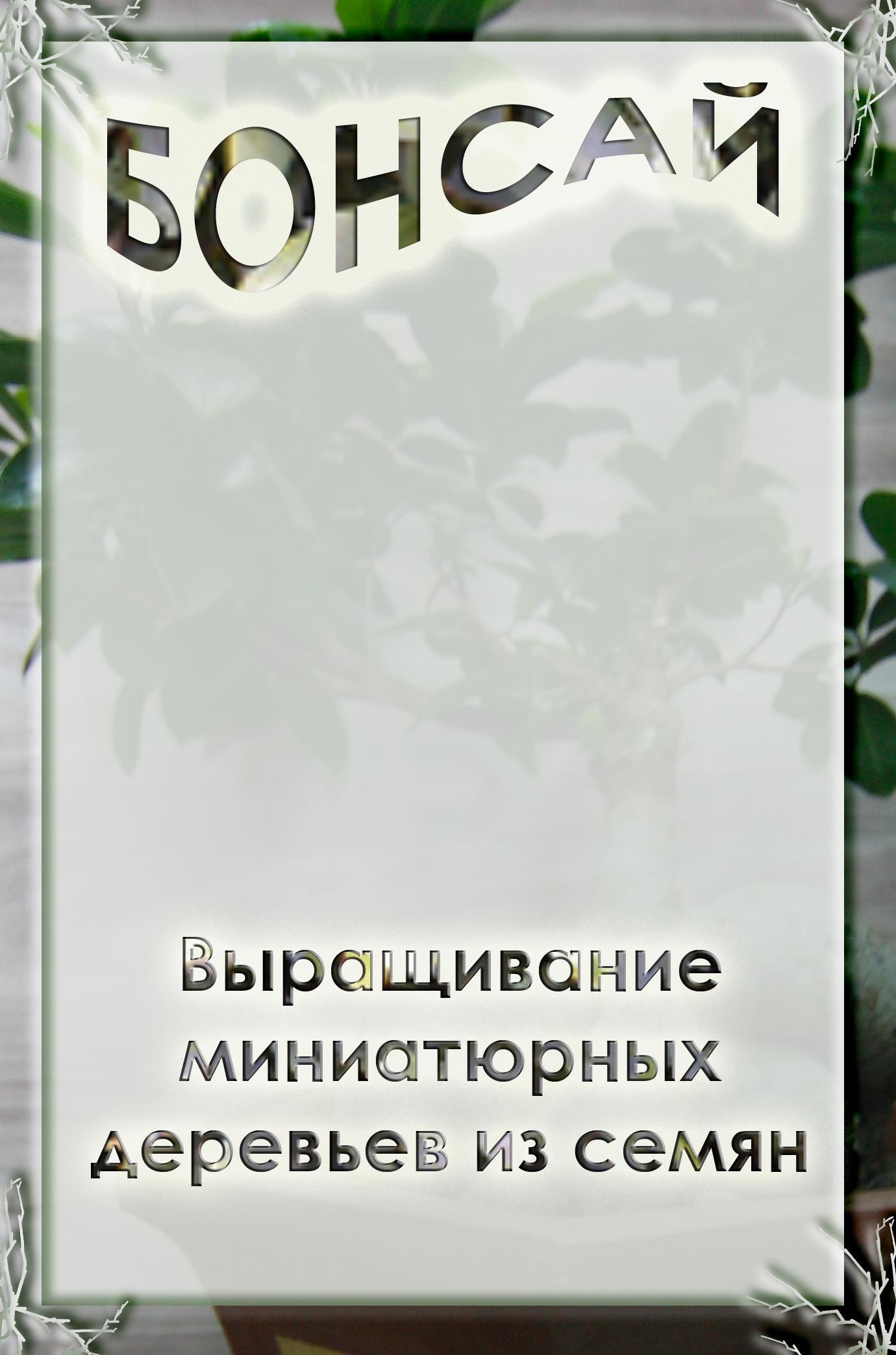 Илья Мельников Выращивание миниатюрных деревьев из семян