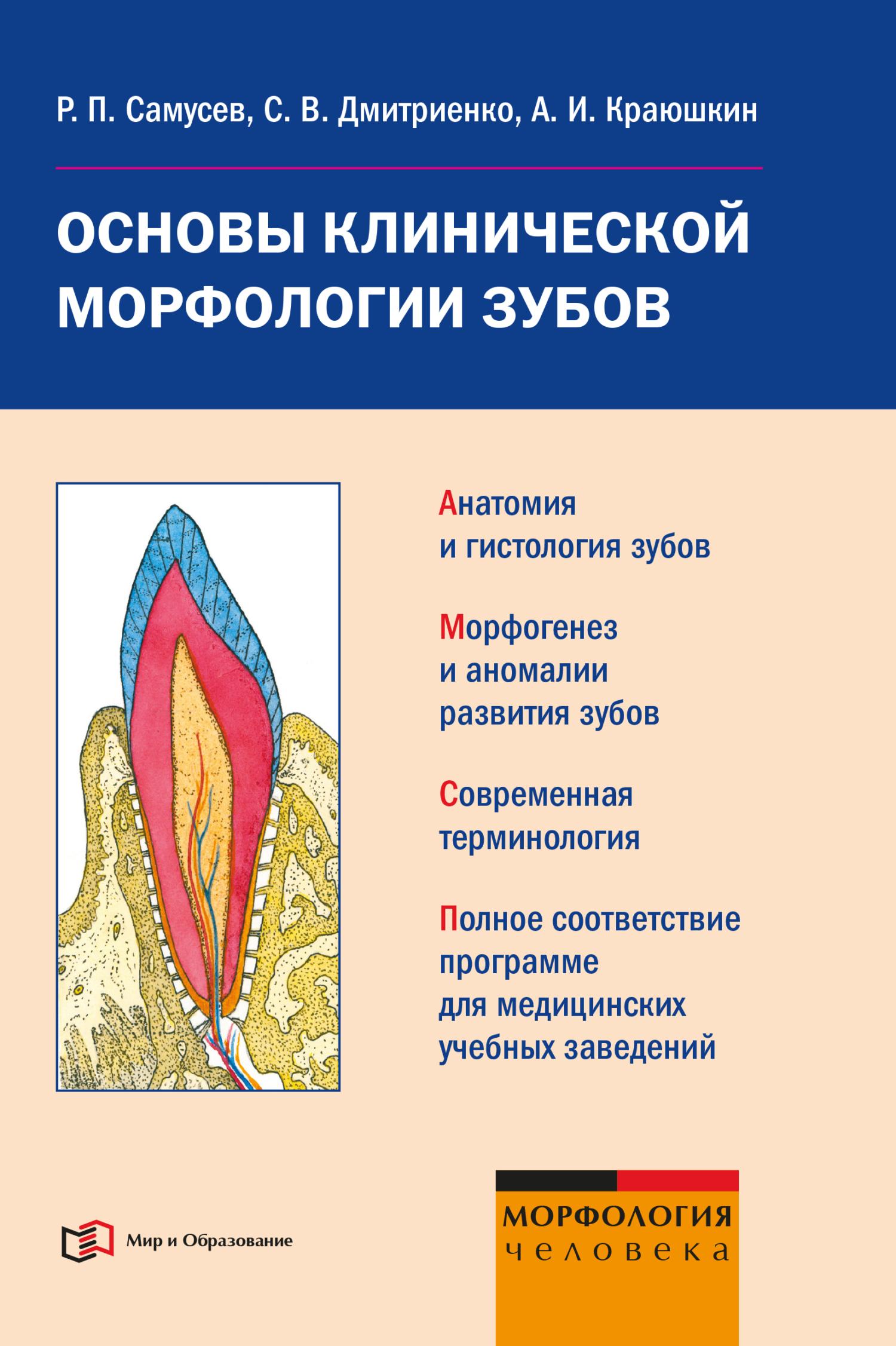 Р. П. Самусев Основы клинической морфологии зубов: учебное пособие р п самусев общая и частная гистология