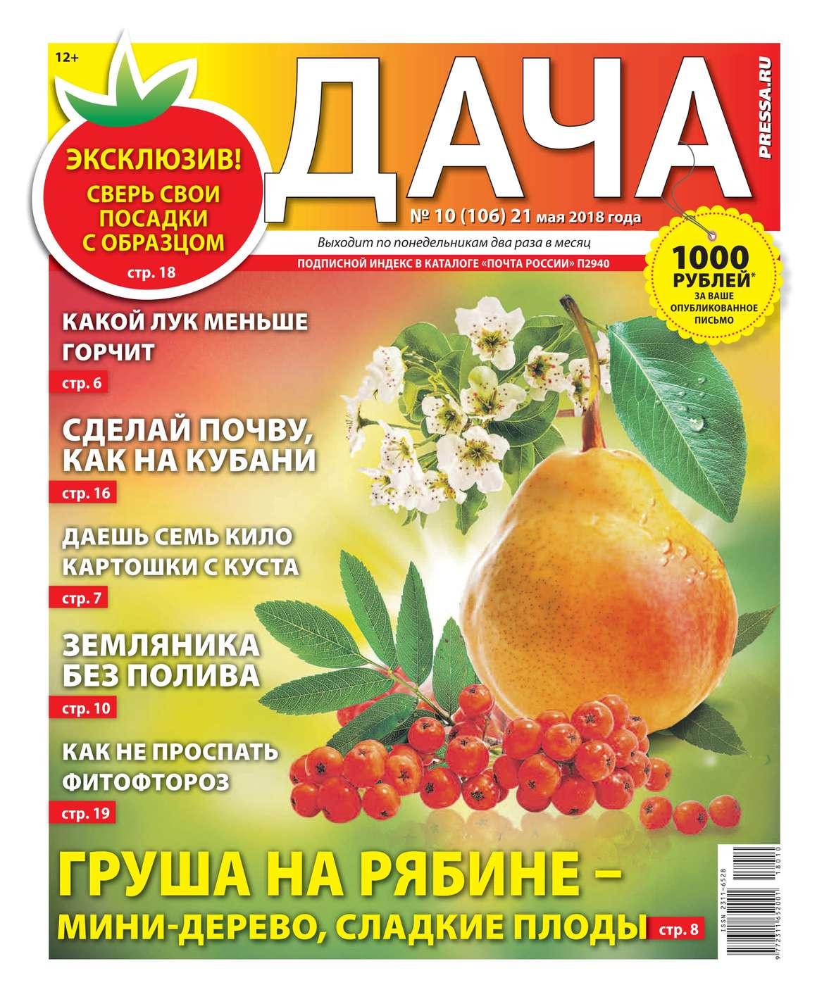 Редакция газеты Дача Pressa.ru Дача Pressa.ru 10-2018 свитшот унисекс с полной запечаткой printio на 23 февраля прикольная