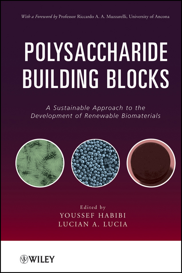 Lucia Lucian A. Polysaccharide Building Blocks. A Sustainable Approach to the Development of Renewable Biomaterials smart biomaterials