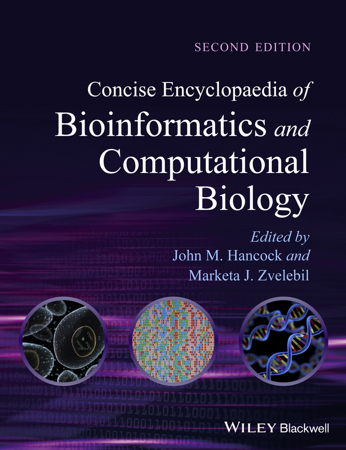 Фото - Zvelebil Marketa J. Concise Encyclopaedia of Bioinformatics and Computational Biology concise colour block and circle pattern design men s slippers