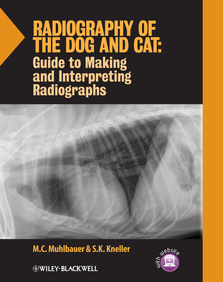 Muhlbauer M. C. Radiography of the Dog and Cat. Guide to Making and Interpreting Radiographs osteoporosis on quantifying the radiographic manifestation