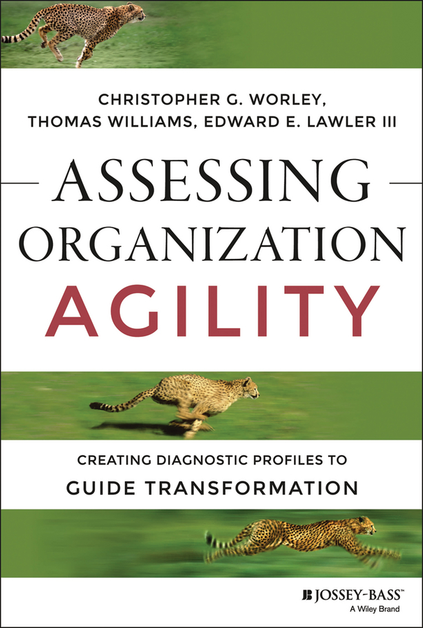 Christopher Worley G. Assessing Organization Agility. Creating Diagnostic Profiles to Guide Transformation michael hugos h business agility sustainable prosperity in a relentlessly competitive world