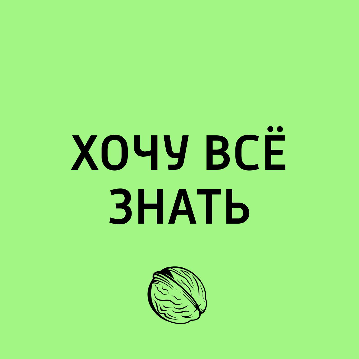 Торческий коллекти программы «Хочу сё знать» Транссиб. Поолжье, еропейская Россия