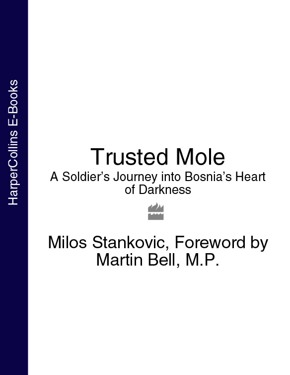 Martin Bell Trusted Mole: A Soldier's Journey into Bosnia's Heart of Darkness laser freckle removal machine skin mole removal dark spot remover for face wart tag tattoo remaval pen