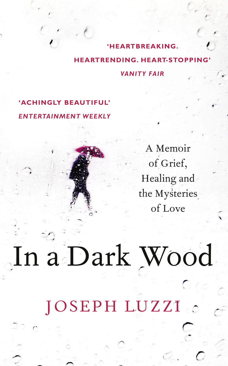 Joseph Luzzi In a Dark Wood: What Dante Taught Me About Grief, Healing, and the Mysteries of Love what i love about christmas