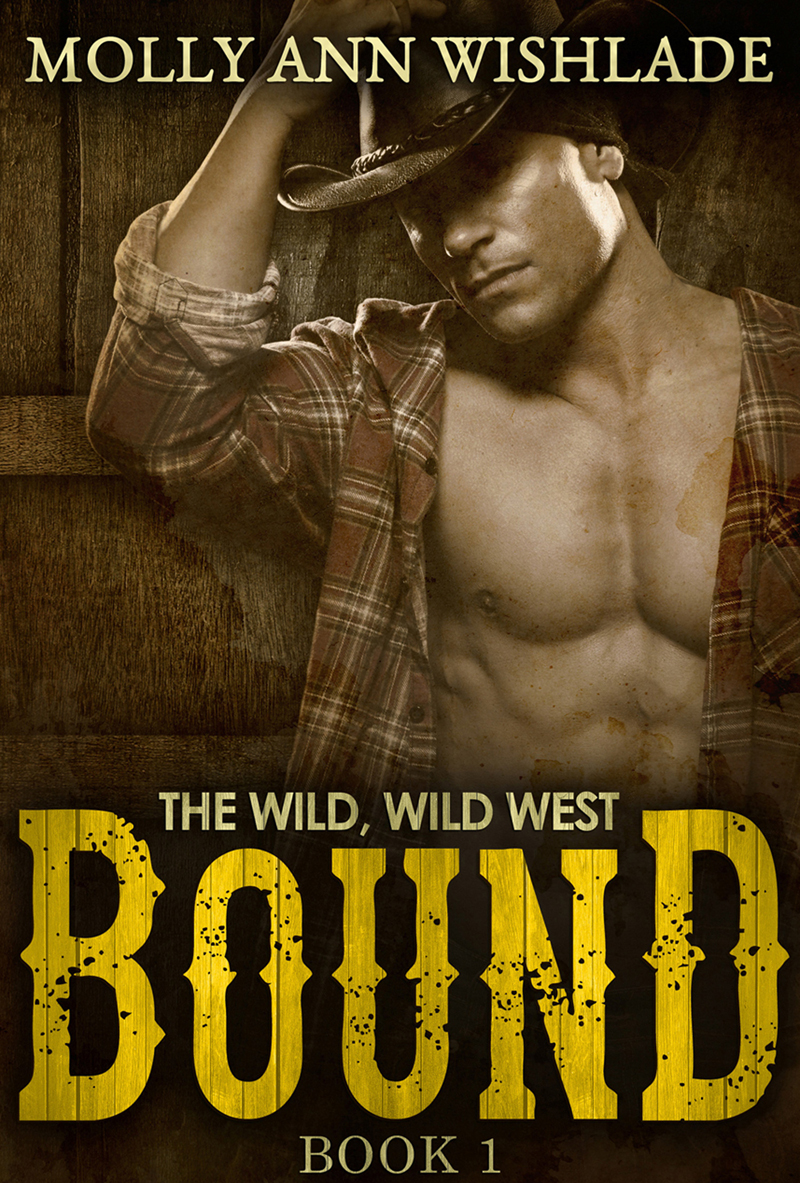 Bound: A sizzling hot Western romance ( Molly Wishlade Ann  )