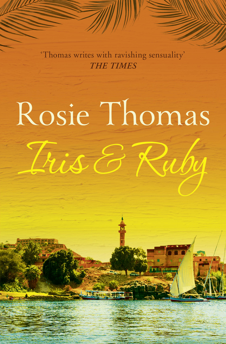 Rosie Thomas Iris and Ruby: A gripping, exotic historical novel a suit of elegant faux ruby zircon geometric necklace and earrings for women