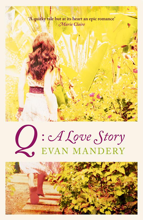 Evan Mandery Q: A Love Story tommaso pincio love shaped story