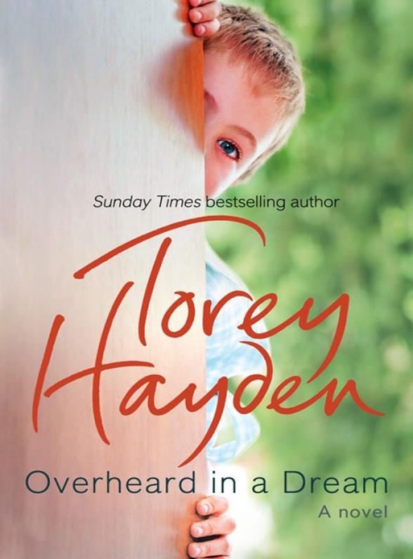 Torey Hayden Overheard in a Dream стул hayden