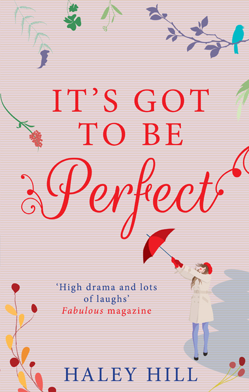 Haley Hill It's Got To Be Perfect: A laugh out loud comedy about finding your perfect match matchmaking the nerd