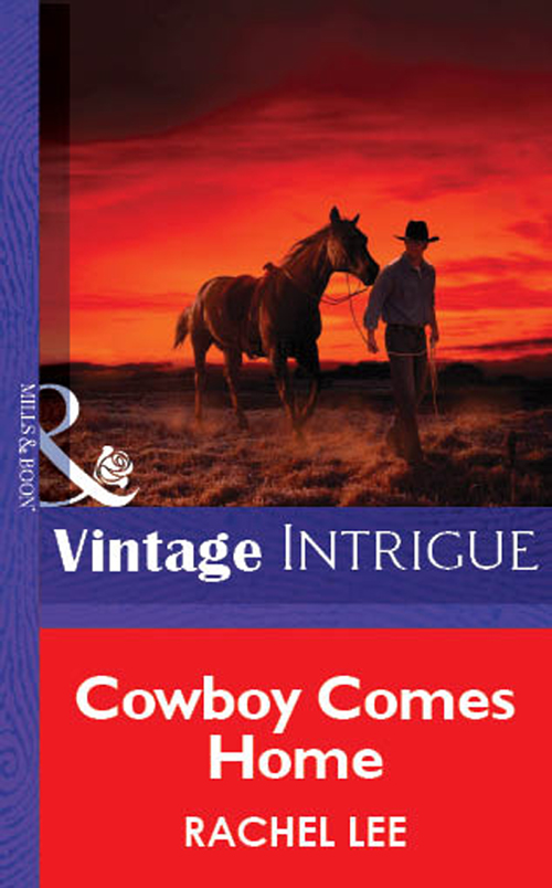 Rachel Lee Cowboy Comes Home kimberly vogel a call to arms