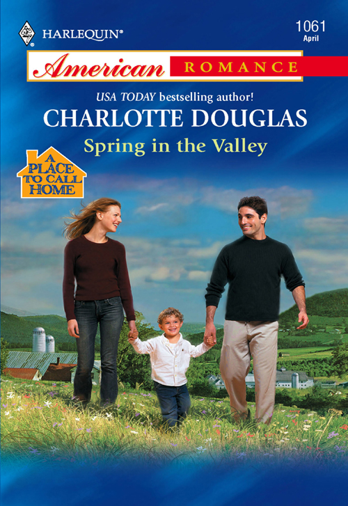 Charlotte Douglas Spring In The Valley aerosols climatology at mohal in kullu valley himachal pradesh india