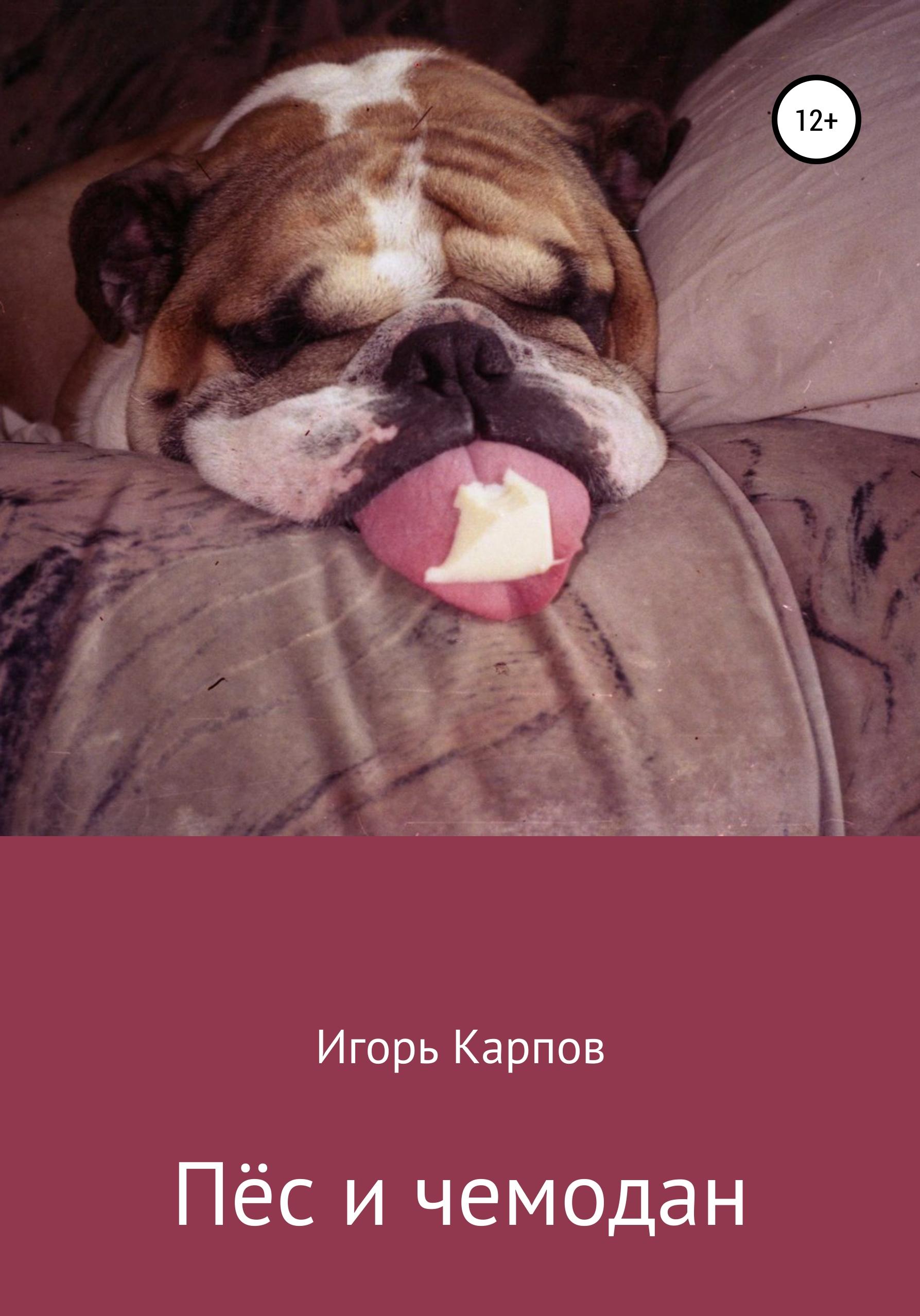 Игорь Олегович Карпов Пёс и чемодан