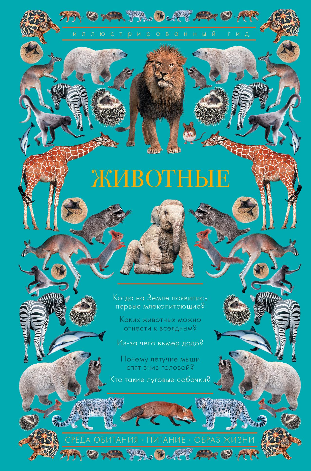Фото - Анастасия Чудова Животные. Иллюстрированный гид спектор а лошади большой иллюстрированный гид