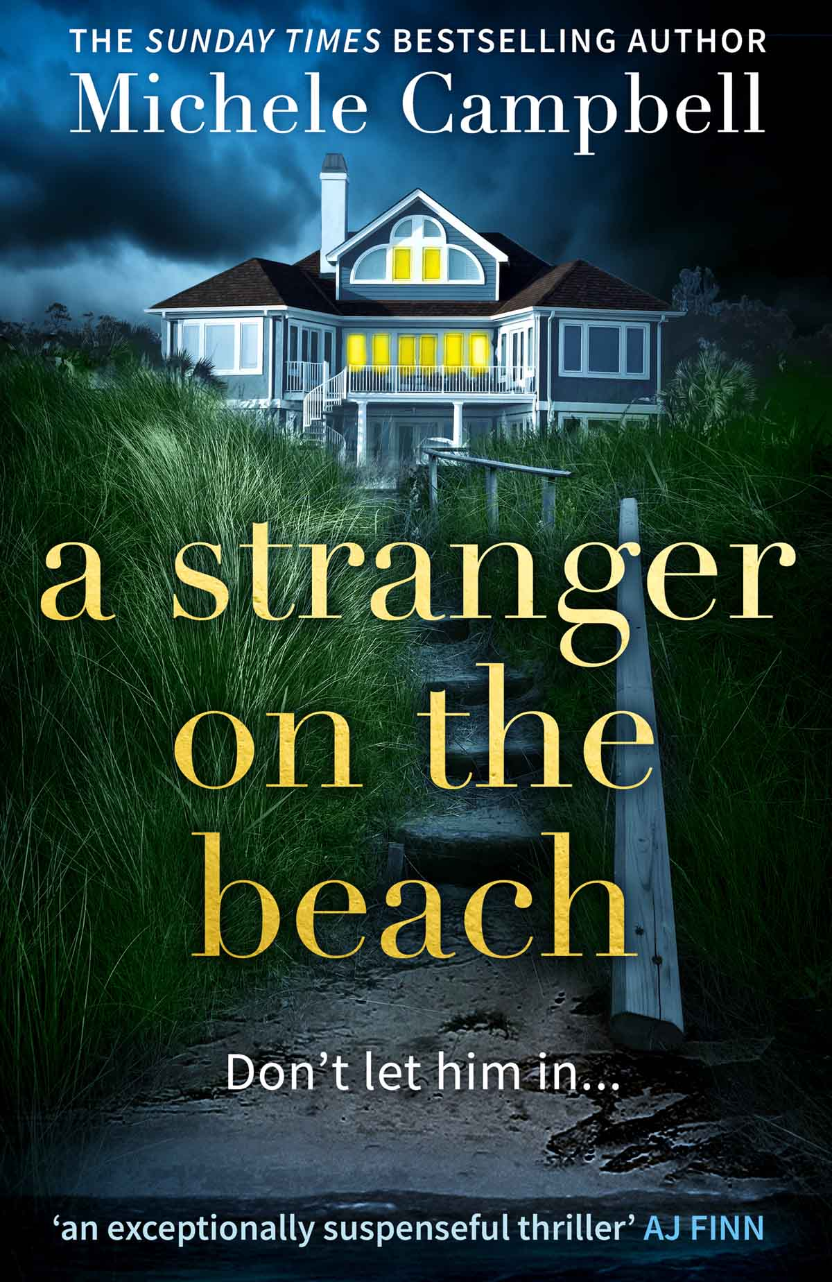 Michele Campbell A Stranger on the Beach gregory kent stanley my house wasn t on stilts rites of passage for a displaced appalachian a very southern novel