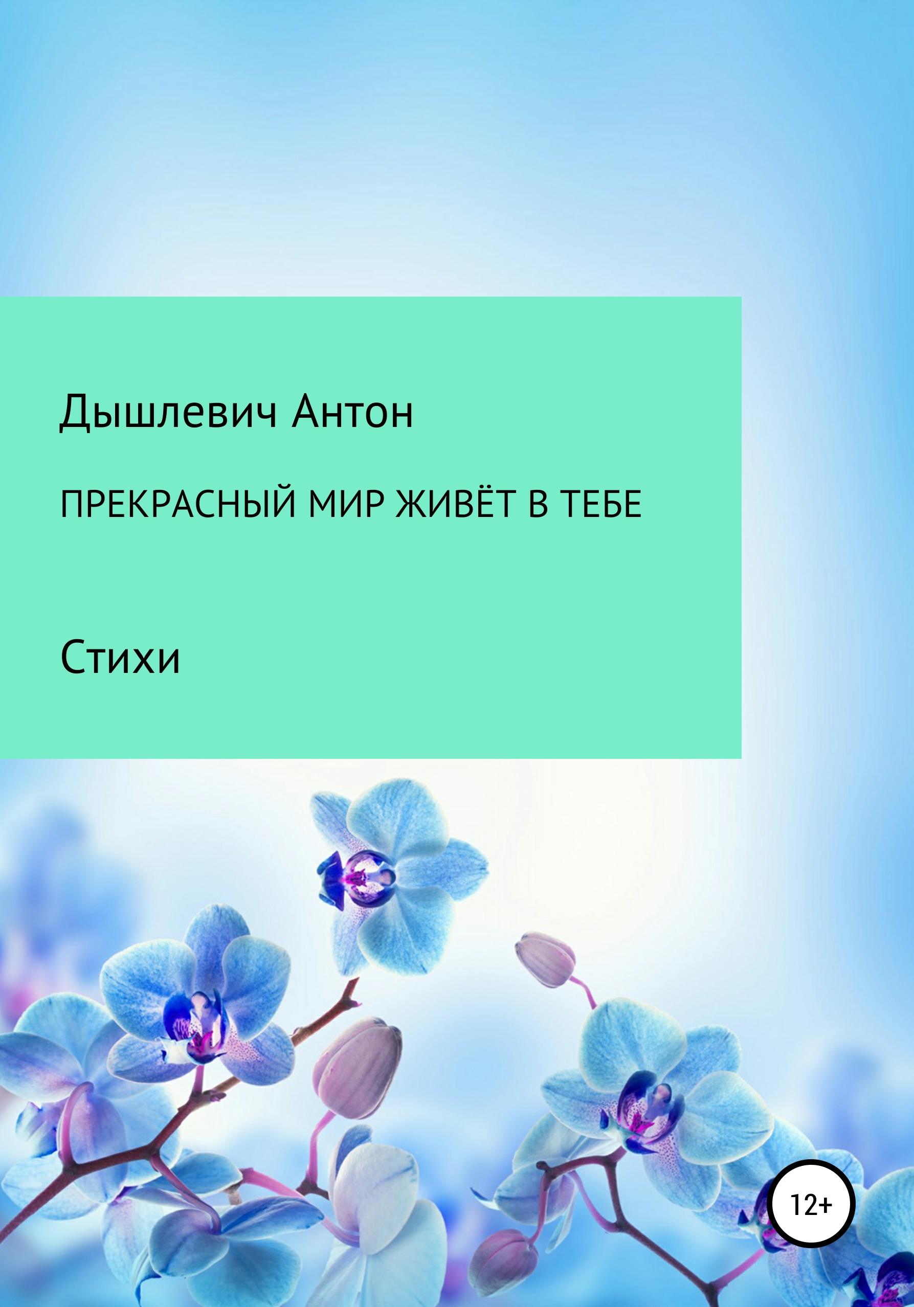 цена на Антон Владимирович Дышлевич Прекрасный мир живёт в тебе
