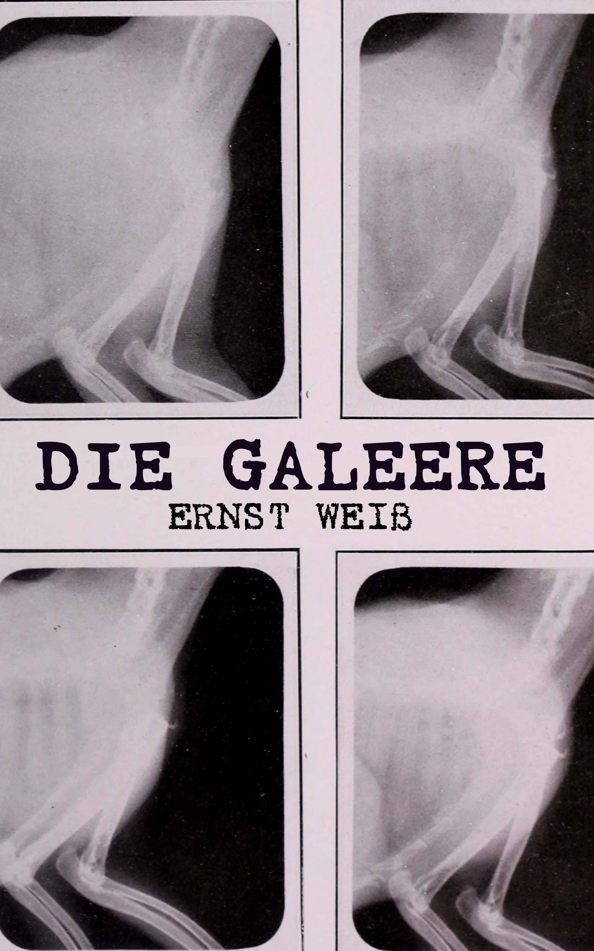 Ernst Weiß Die Galeere