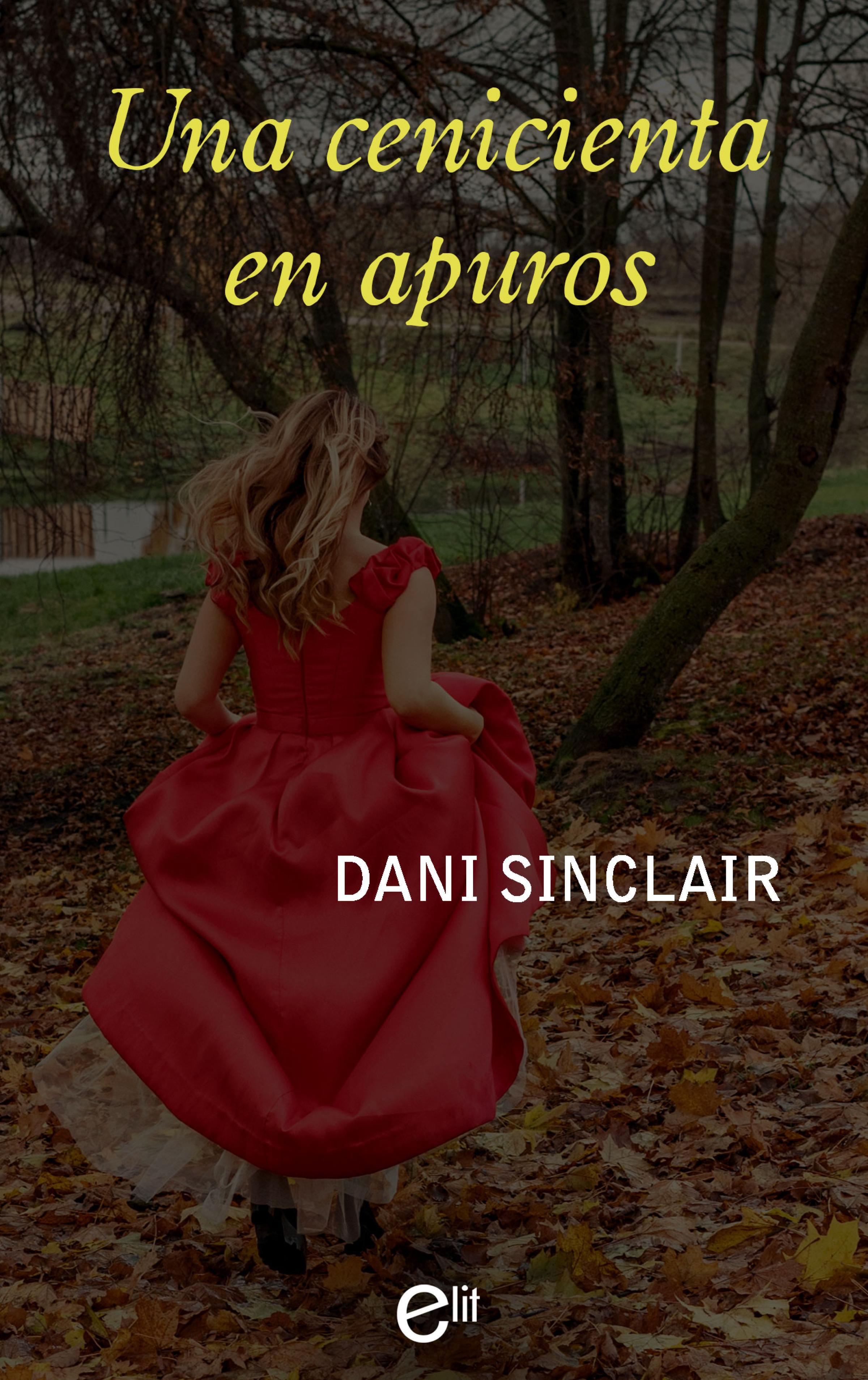 цена Dani Sinclair Una cenicienta en apuros онлайн в 2017 году