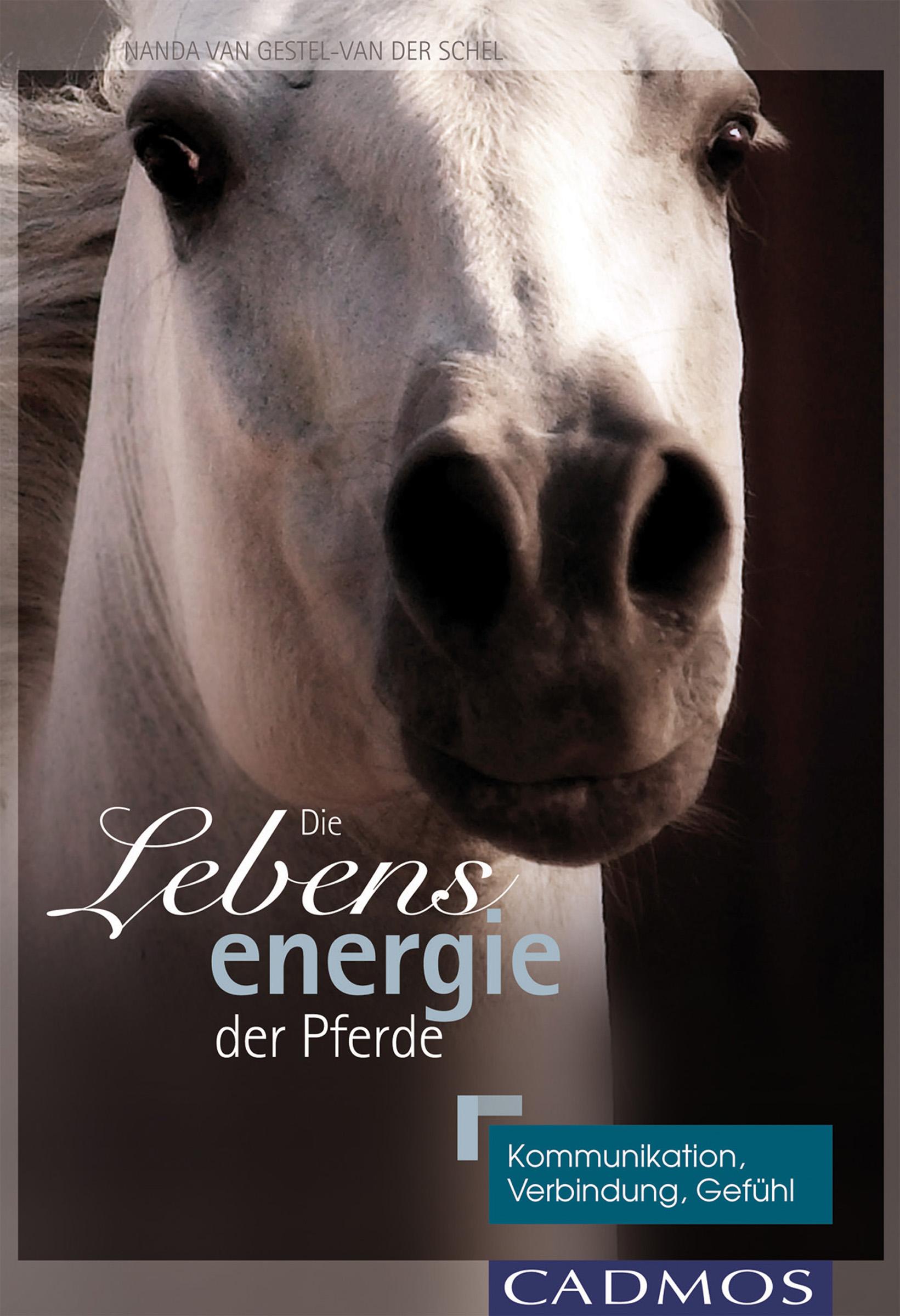 цена на Nanda van Gestel-van der Schel Die Lebensenergie der Pferde
