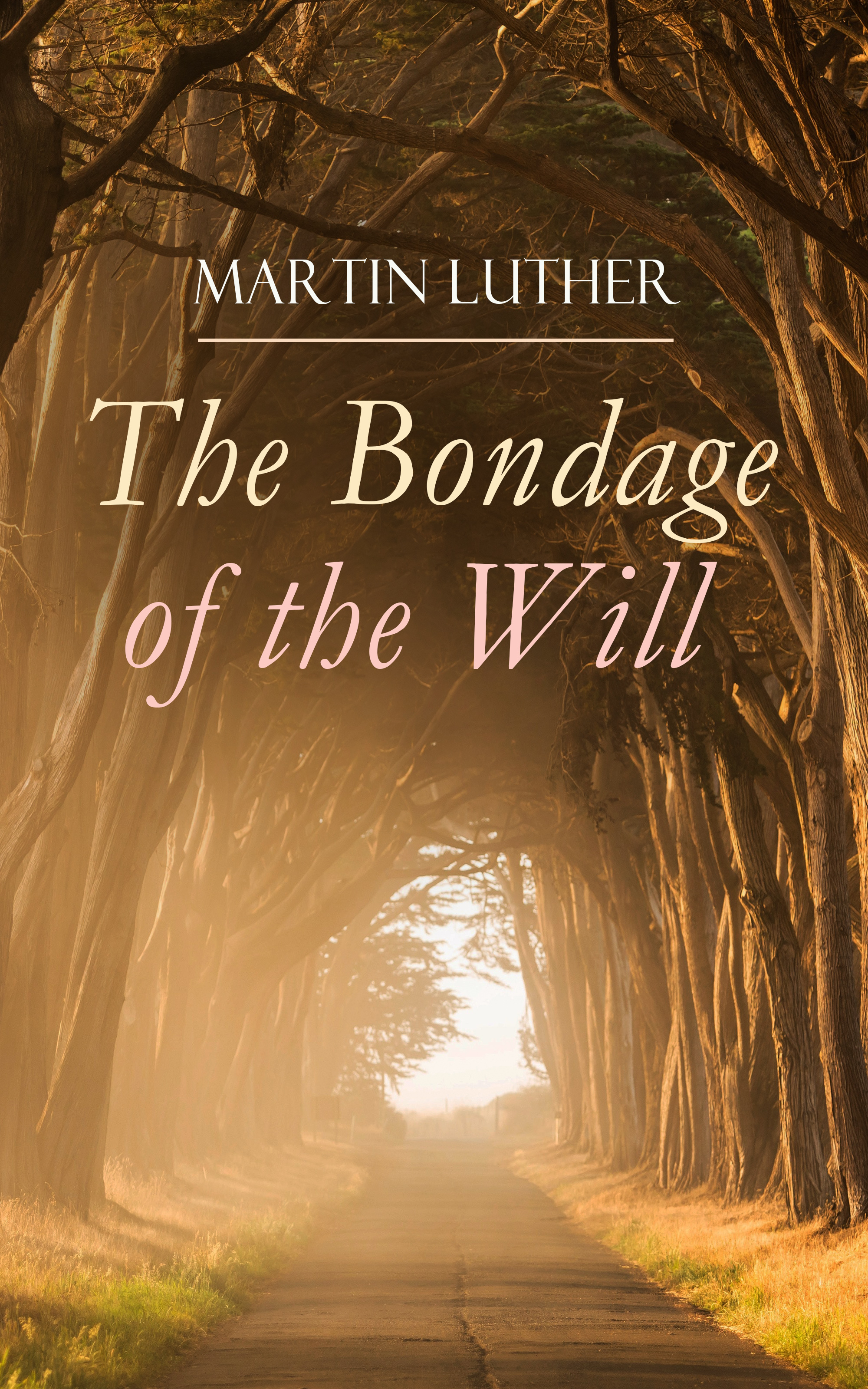 Martin Luther The Bondage of the Will martin luther king jr the last interview