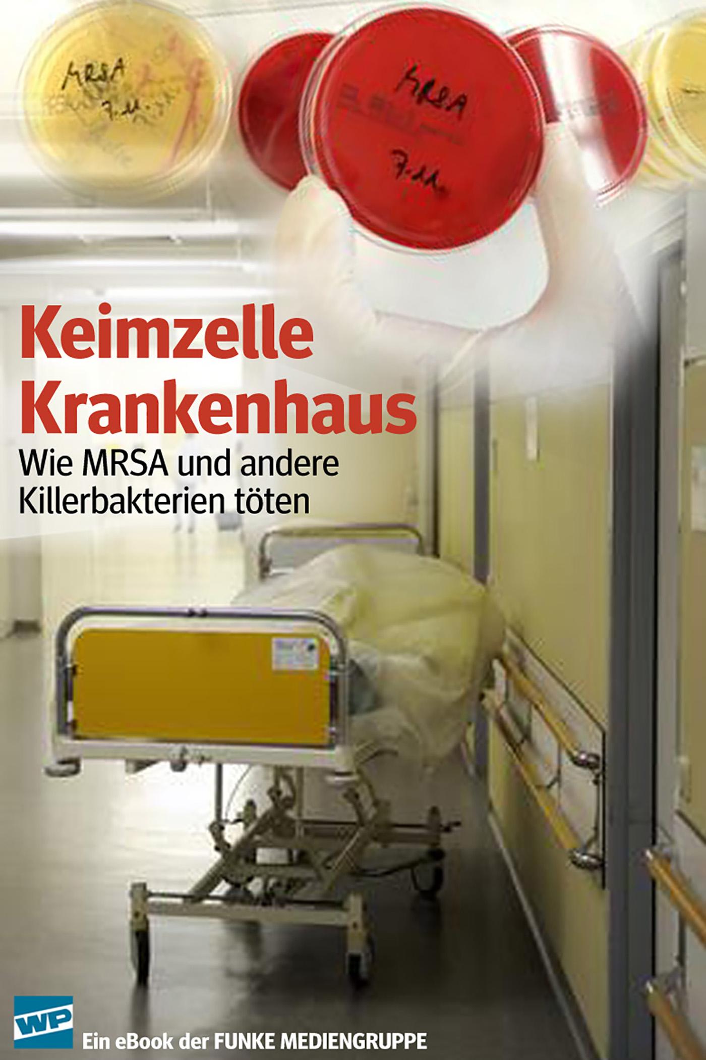 Klaus Brandt Keimzelle Krankenhaus. WP-Ausgabe fruhlings wimmelbuch midi ausgabe