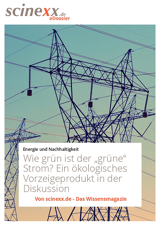 Фото - Nadja Podbregar Wie grün ist der grüne Strom? paris s strom robert d strom thinking in childhood and adolescence