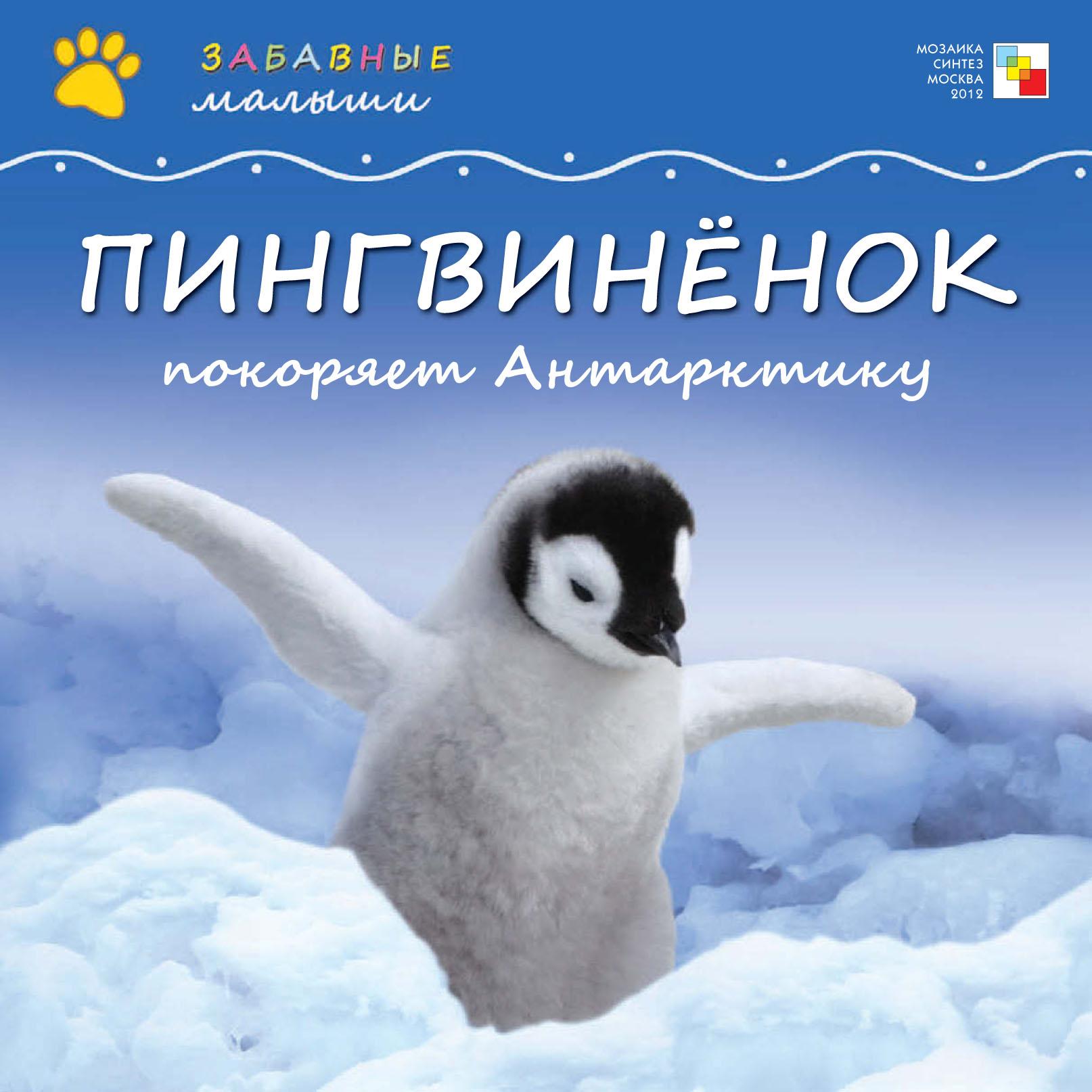 Пингвинёнок покоряет Антарктиду