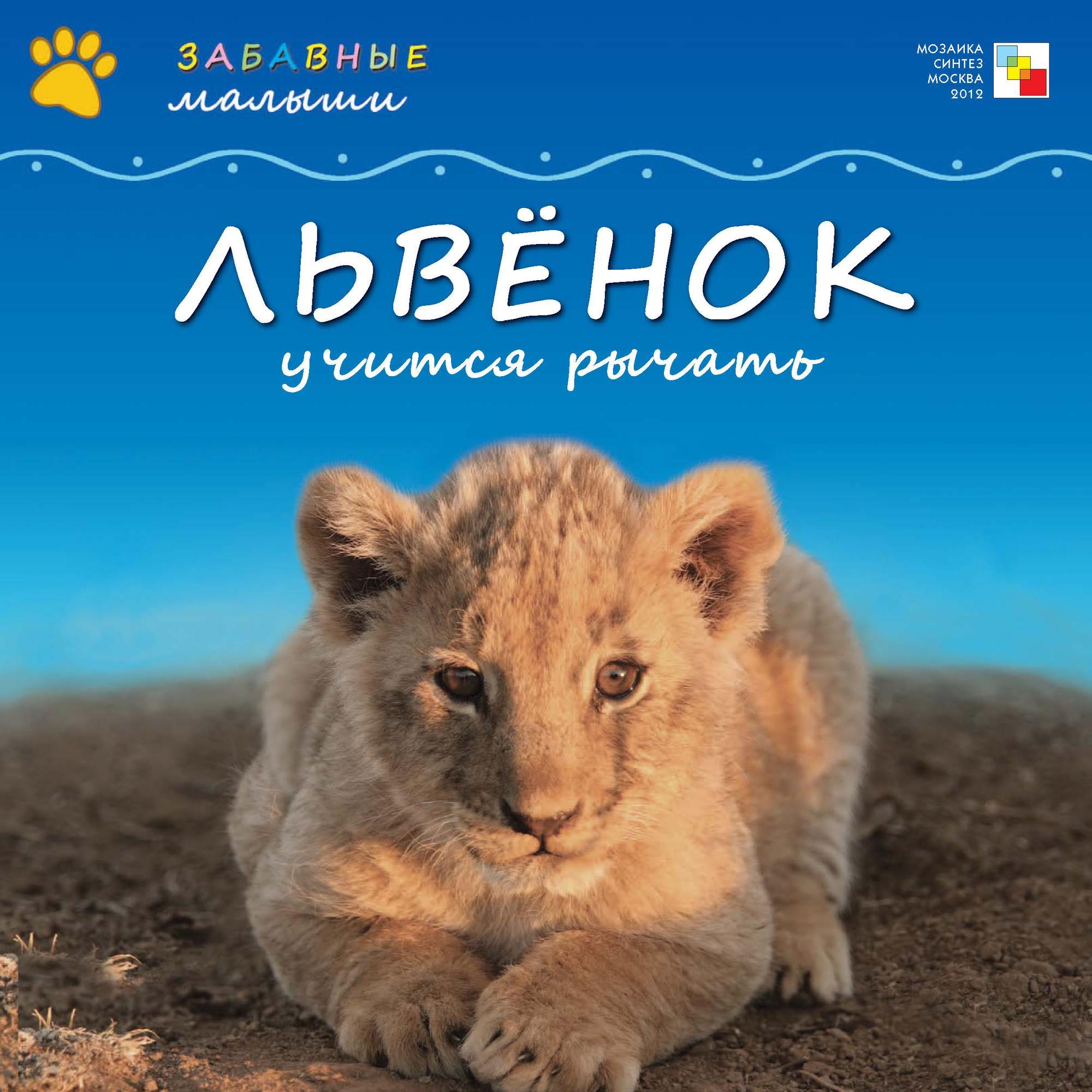 Сужата Менон Львёнок учится рычать рубель птицы львы 02